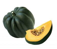 50 TABLE KING ACORN SQUASH Winter or Summer Cucurbita Maxima Vegetable Seeds