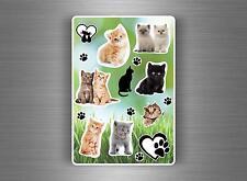 Sette 10x Sticker adesivi adesivo bambini parete scrapbooking gatto