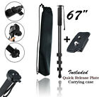 """67"""" Lightweight Monopod For Canon Nikon Sony Camera/Camcorder & Quick Release"""