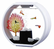 Fish R FUN, Deco Mini Peces Tanque 10L Blanco