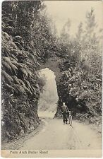 NZ BULLER ROAD WEST COAST BIKE AND FERN ARCH REAL PHOTO POSTCARD