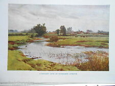 Dorset 1925 ORIGINALE antiquario stampa di wimborne Minster by Walter Tyndale