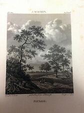 PAESAGGIO Cavalli Winants - Galerie du musée Napoléon Joseph Lavallée 1804-1815