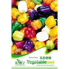 FD1285 Sweet Pepper Seed Colorful Ornamental Pepper Seeds ~1 Pack 20 Seeds~