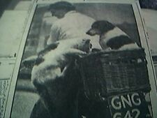 news item 1947 f a clarke hemsby norfolk travelling pets