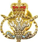 STAFFORDSHIRE REGIMENT HAND MADE PLATED IN UK LAPEL PIN BADGE