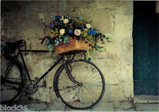BIKE WITH FLOWERS IN BASKET in old town Modern Russian card