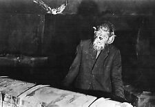 Hammer  The curse of the werewolf  Oliver Reed  press/cinema  photo 8x10 glossy
