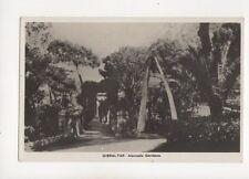 Gibraltar Alameda Gardens Vintage RP Postcard Sacarello 200b