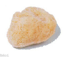 "CLEANSING,BATHING & COSMETIC NATURAL SEA SPONGE  Kingsley CB-SEA 2"" ( 1-PK )"