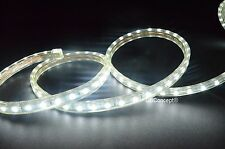 UL Listed,10 Feet,Pure White 6000K,Super Bright 2700 Lumen 120V Flat LED Strip