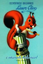 CUTE SQUIRREL EAMES ERA 1950S ITALIAN TOOTHPASTE ADVERTISEMENT POSTER A3 REPRINT