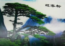 SERENE TREE  3D Lenticular Poster- 10x14 - easy to frame or hang as is