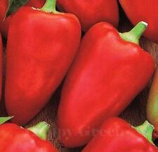 SWEET PEPE - 50 semi-cuore rosso-Mini MARCONI