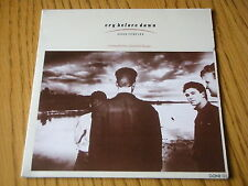 "CRY BEFORE DAWN - GONE FOREVER   7"" VINYL GATEFOLD PS"
