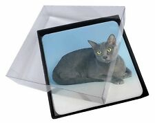 4x Silver Grey Thai Korat Cat Picture Table Coasters Set in Gift Box, AC-101C