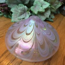Beautiful Iridescent Hand Blown Art Glass Oil Lamp Excellent Never Used