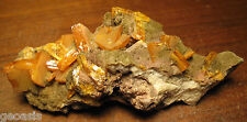 Old Time Blocky Wulfenite Crystals from Los Lamentos