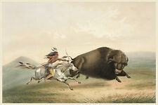 George Catlin's Indian Gallery: Hunting Buffalo on Horseback - Fine Art Print