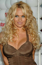 Pam Anderson 8x10 sexy brown tight dress