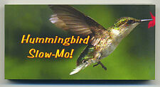 """HUMMINGBIRD in Slow Motion Small 4"""" by 2"""" inch MOTION FLIP Book New"""
