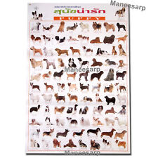 PUPPY DOG POSTER MORE THAN 80 BREEDS SPECIE DOGS FOR EDUCATION DEMONSTRATION