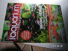 µµ Aquarium à la maison HS n°18 Neons Tetras et Characidés amerique du sud