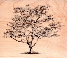NEW INKADINKADO RUBBER STAMP SKETCHED TREE DOGWOOD Large Botanical