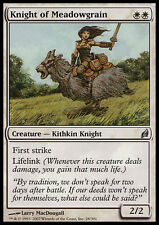 MTG KNIGHT OF MEADOWGRAIN EXC - CAVALIERA DI PRATOGRANO - LRW - MAGIC