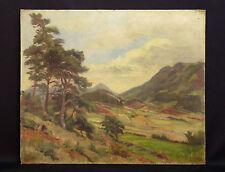Maurice DESEVRE (1887-1937)paysage de montagne 1928 Alpen landscape mountain