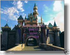 Disneyland Sleeping Beauty Castle NEW  8 x 10 Professional