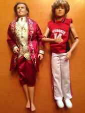 Mattel Barbie Ken Rooted Hair Doll Jointed Articulated King Prince & Wildcats