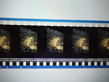 Star Trek First Contact 35mm Unmounted film cells - Borg Cube