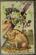 cpa fantaisie cochon pieces d'or fer a cheval humoristique humour