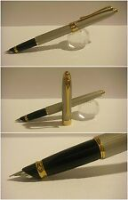stilografica Hero Pen Company fountain Pen Gray Golden
