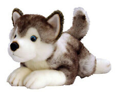 *NEW* PLUSH SOFT TOY KORIMCO Husky Dog Storm 35cm - Teddy