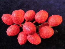 """Vintage Millinery Flower Fruit 7/8"""" Red Lot 12pc Shabby for Hat GF19"""