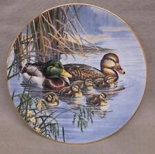 """Family Outing"" 1st issue A Loving Look: Duck Families; Mallard 1991 COA & box"