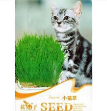 FD1063 Cat Grass Seed For Your Cat Food Pet Food Pet Grass Seed 1 Bag 200 Seeds