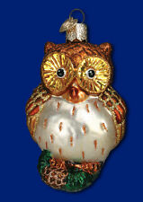 """Wide-Eyed Owl"" (16090) Old World Christmas Glass Ornament"