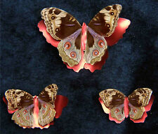 Printed, Die Cut Butterflies American Lady Brown Design