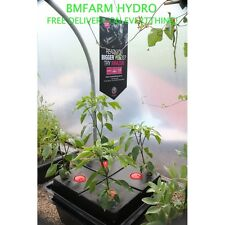Amazon Aeroponic System Hydroponic Single Amazon 4 Pot Small Hole Plants Cutting