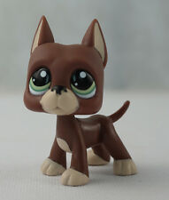Brown Great Dane Dog Girl toys  Littlest Pet Shop LPS #1519 Kids Toys Green Eyes