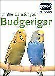 RSPCA Pet Guide: Care for Your Budgerigar by RSPCA Staff (2006, Paperback)