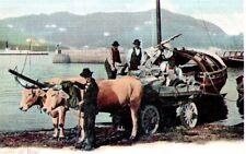 Riproduzione Cartolina Lavoro 1910 Carretta di bovi Lago di Como