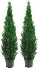 Two 5 foot Outdoor Artificial Cedar Topiary Trees Potted UV Rated Cypress 4 Pine