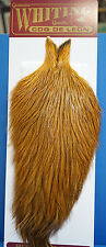 WHITING Coq de Leon Cape BADGER dyed Medium Ginger