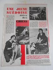 Yvonne Kauhausen chenil élève des chiens Clipping presse 1963
