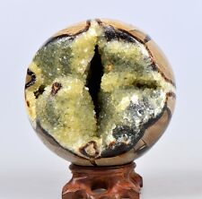 "4.8"" DRAGON SEPTARIAN ORANGE CALCITE GEODE SPHERE/Rosewood Stand-Madagascar Z729"