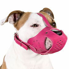 Leather Dog Muzzle Staffordshire Terrier Pit Bull AmStaff Secure Basket